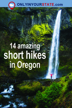 Travel | Oregon | Attractions | Sites | Activities | Things To Do | Weekend | Adventure | Explore | Hiking | Short Hikes | Trails | Fitness