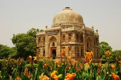 Bright blossoms outside Sheesh Gumbad, Lodi Garden, Delhi.