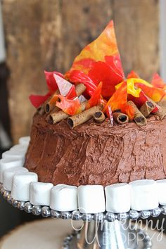 Cute campfire birthday cake, perfect for a western themed party