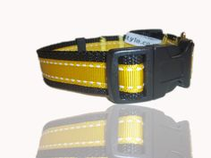 Daffodil Yellow Daisy Doo Saddlestitch Dog Collar From Saint David's Day, Vintage Marketplace, Pet Names, Stitch Design, Pet Accessories, Daffodils, Grosgrain Ribbon, Your Pet, Classic Style