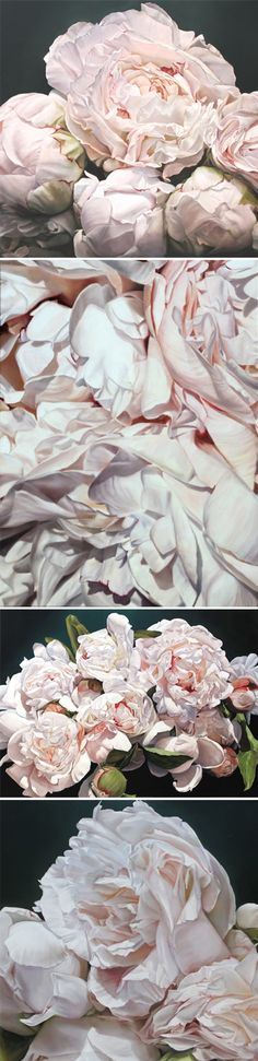 BEAUTIFUL...peony paintings {PAINTINGS?!} by thomas darnell ps. they're HUGE!