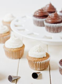 Coconut Flour Cupcake Recipes - Paleo Vanilla and Chocolate Cupcakes