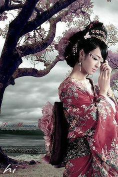 和服 着物 女性 桜の画像 プリ画像