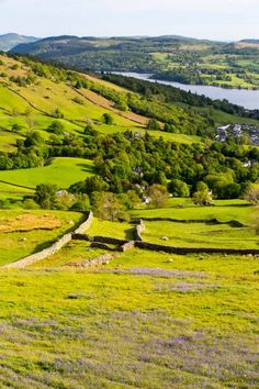 Looking towards Ambleside and Lake Windermere from Red Screes in the Lake District, UK, with Bluebells in the foreground.