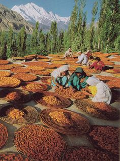 kicker of elves. | Hunza National Geographic March 1994 ...