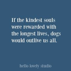 Funny Christmas humor and holiday quote. Humor 28 Lovely Finds for Fur Babies + Dog Quotes to Pin - Hello Lovely Gift Quotes, Dog Quotes, Funny Quotes, Holiday Quote, Holiday Gift Guide, Gratitude Quotes, Positive Quotes, The Beauty Chef, Frases