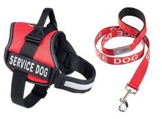 Service Dog Harness and Matching Leash Set | Available In 7 Sizes From Extra Small to Extra Large | Vest Features Reflective Patch and Comfortable Mesh Design From Industrial Puppy >>> Visit the image link more details. (This is an affiliate link and I receive a commission for the sales)