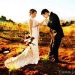 http://www.joymay.net/wedding-photographers-san-francisco-san-jose-wedding-photographers/  Wedding Photographers San Francisco  San Jose wedding photographers