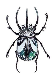 Humphrey Bugart Beetle illustration