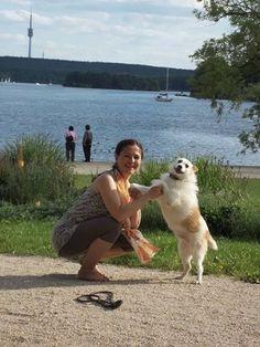 Mi perrito Félix desde Casas Ibáñez en La Mancha ES y yo (Georgina) a casa en Berlin.
