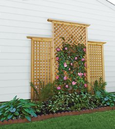 Build a Trellis Add dimension, color, and decoration to a blank space with a sturdy host for climbing plantsAdd dimension, color, and decoration to a blank space with a sturdy host for climbing plants Backyard Vegetable Gardens, Outdoor Gardens, Herbs Garden, Fruit Garden, Garden Paths, Garden Arbor, Landscape Design, Garden Design, Fence Design