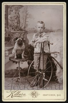 Antique Cabinet Card Photo // Boy with Tricycle Bicycle and PUG DOG // Canada