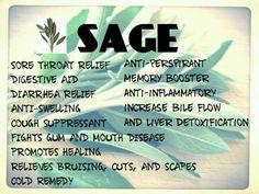 sage info chart