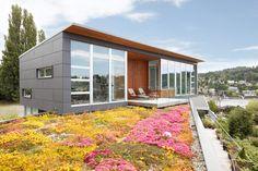 James Hardie Concrete Siding Panels Home Design Ideas, Pictures, Remodel and Decor