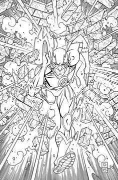 Image Flash 48 DCU Variant