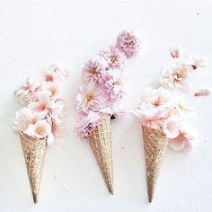 Beautiful flowers ice cream! #minimalmood #minimalove #minimal_perfection #minimalhunter #minimalismo #minimal_graphy #minimalfashion #thatsdarling #darlingmovement #darlingweekend #livethelittlethings #thehappynow #pursuepretty #petitejoys #flashesofdel