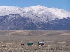 Sheepherder - Pinedale, Wyoming