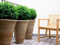 Perfect for a deck and frost proofed, these ceramic containers create style and privacy. - Stylish Contemporary Containers on HGTV