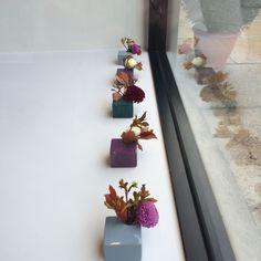 Autumn florals Floating Shelves, Boudoir, Florals, Autumn, Home Decor, Woman, Floral, Powder Room, Decoration Home