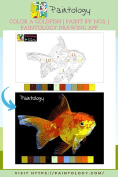 As a child we have always been intrigued and fascinated by the goldfish in a bowl. In actual fact, I won one in a fare and kept in a bowl. I loved watching it swirl around the bowl and picking things from the bottom. Swimming to the surface to get some air. In this coloring tutorial, we will take the Paint by nos. drawing and color the goldfish with a range of colors, twelve in total. You will be surprised by the number of colors the fish possess and is a great coloring exercise. #paintbynumbers