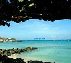 Swallows Beach, Tobago