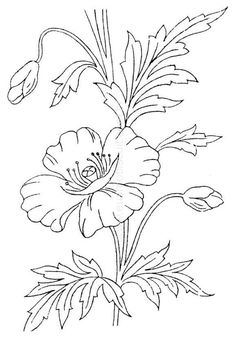 Border Embroidery Designs, Floral Embroidery Patterns, Embroidery Sampler, Vintage Embroidery, Machine Embroidery, Flower Coloring Pages, Colouring Pages, Flower Mural, Tole Painting Patterns