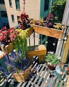 DIY Balcony Railing Planter: Decorative Planter Ideas - Unique Balcony & Garden Decoration and Easy DIY Ideas Apartment Balcony Garden, Small Balcony Garden, Small Patio, Balcony Railing Planters, Garden Inspiration, Garden Ideas, Famous Interior Designers, Decorative Planters, Celebrity Houses