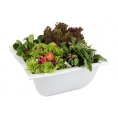 Unverwüstlich. Servierschale. Schale. Schüssel. Stabil. Porzellan-Optik. Melamin. Stabil, Planter Pots, Herbs, Food, Fine Dining, Cooking, Essen, Herb, Meals