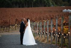 Those reds, oranges, yellows, and smooches! Fall weddings in wine country are some of my favorite to shoot. 🍂😘🍂