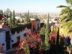 San Miguel De Allende, Mexico - wanting a hacienda patio and a margarita stat.