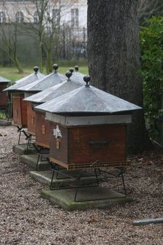 At the southwest corner of Jardin du Luxembourg, bees are making honey for local Parisians. An apiary since 1856, this secluded, but fascinating part of the beautiful Luxembourg gardens allows you to learn more about the process in which honey is made. Aren't they beautiful? #honey #beekeeping #backyardbeekeeper