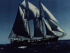 One of the more recent and more mysterious disappearances at sea concerns the schooner Panatela, which disappeared just off the coast of Sydney on the 8th of November, 1988. The voyage into oblivio…