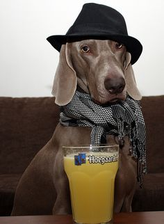 dohlong's first pint by dohlongma, via Flickr