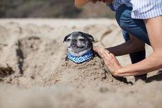 Uni cools off at the beach in style. (Calidreamin / Malibu Blue)