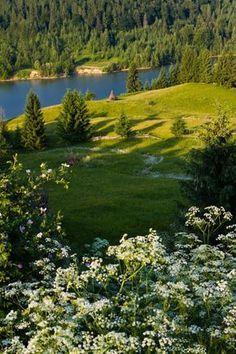Colibita lake, Bistrita-Nasaud, Romania (By Colin Crestin), www.romaniasfriends.com Green Landscape, Peace Of Mind, Beautiful Landscapes, Serenity, Natural Beauty, Beautiful Places, Paradise, Scenery, Golf Courses