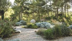 A big stone ball carved, Career Sarragan in Baux-de-Provence. Lawn And Landscape, House Landscape, Landscape Design, Garden Design, Front House Landscaping, Acreage Landscaping, Backyard Landscaping, Landscaping Ideas, Natural Landscaping