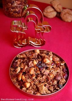 Gingerbread Granola   Neo-Homesteading