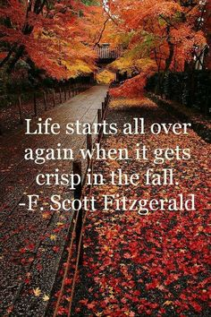 Life starts all over again when it gets crisp in the fall. - F. Scott Fitzgerald
