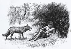 """Art by W. H. Drake from """"The Jungle Book"""" by Rudyard Kipling. London: MacMillan & Co., 1894. First edition  """"Wake, little brother; I bring news."""""""