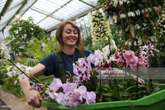 An employee carries wild orchids during a photocall for the 'Orchid Festival' at the Royal Botanic Gardens in Kew, west London on February 2, 2017. / AFP / Daniel LEAL