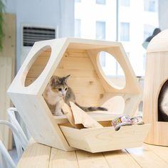 Dog Crate Furniture, Cat House Diy, Cat Stands, Cat Playground, Cat Room, Cat Wall, Diy Stuffed Animals, Dog Houses, Pet Beds