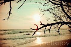 TITLE: Wind on the Water, LOCATION: Playa Esterillos, Costa Rica, Canvas Art, Trees, Surf, Sunset