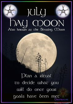 Moon:  JULY ~ HAY #MOON. Also known as the Blessing Moon. Plan a ritual to decide what you will do once your goals have been met.