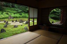光明院・桔梗 : 花景色-K.W.C. PhotoBlog