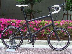 more black Dahon Dash X20