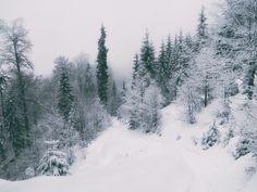 Stâna de Vale, iarna   Bihor in imagini Snow, Places, Nature, Photography, Outdoor, Outdoors, Naturaleza, Photograph, Fotografie