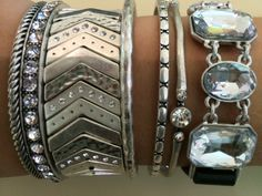 Premier Designs 2014-2015 Arm party