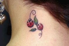 Lady bugs for my bug!