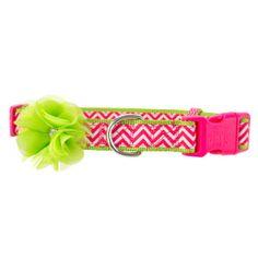 Martha Stewart Pets® Allie Chevron Adjustable Dog Collar