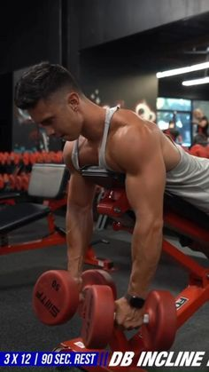 Gym Back Workout, Big Biceps Workout, Ripped Workout, Gym Workout Tips, Dumbbell Workout, Back Weight Exercises, Rear Delt Exercises, Weight Training Workouts, Workout Videos For Men